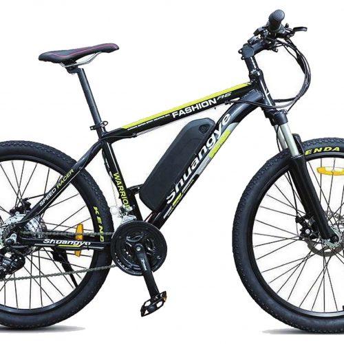 E- Mountain bike